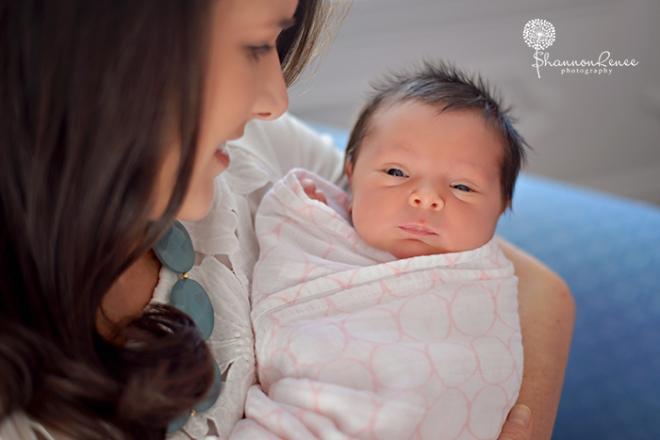 south tampa newborn photographer 2