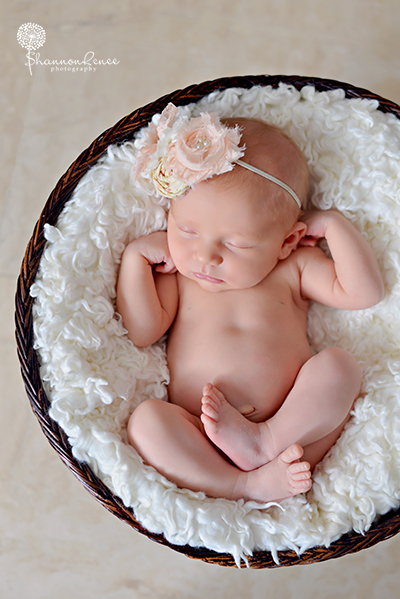 south tampa newborn photographer 5