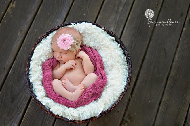 south tampa newborn photographer 6