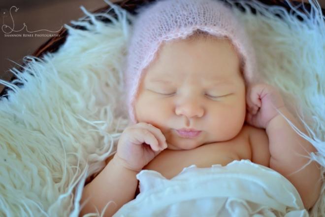 tampa newborn photographer 27