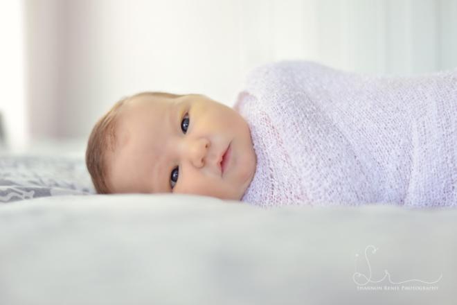 tampa newborn photographer 3