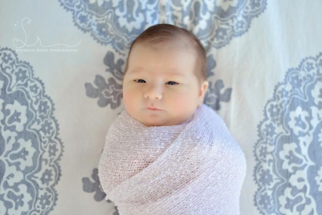 tampa newborn photographer 4