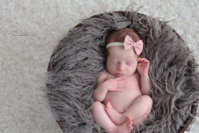 Tampa-Newborn-Photographer-6