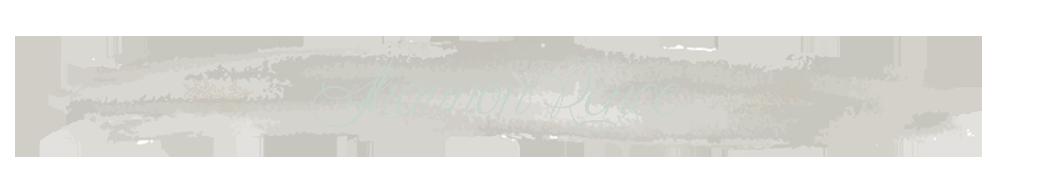 Shannon Renee Photography logo